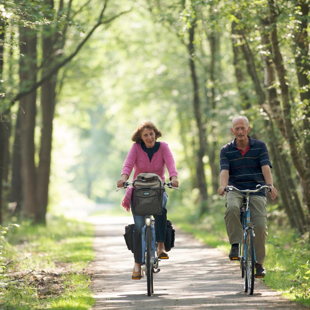 fiets-en-wandelroutes-hoogeveen