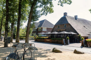 Zaagkoele op de Brink in Dwingeloo